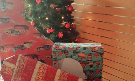 real-Weihnachtsbaumaktion